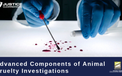 Advanced Components of Animal Cruelty Investigations