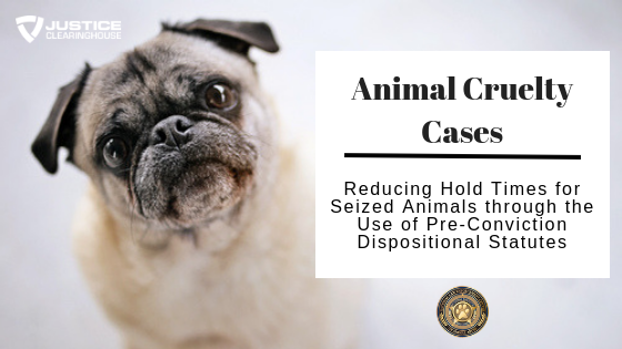 Pre-Conviction Forfeiture of Seized Animals: Considerations for Justice Professionals