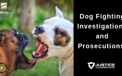 Dog Fighting Investigations and Prosecutions