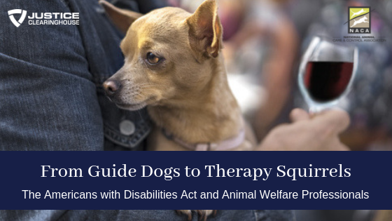 From Guide Dogs to Therapy Squirrels: The Americans with Disabilities Act and Animal Welfare Professionals