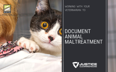 Working with your veterinarian to better document animal maltreatment