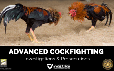 Advanced Cock Fighting Investigations and Prosecutions