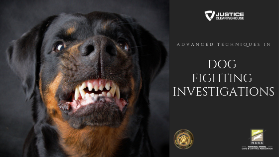 Advanced Dog Fighting Investigations