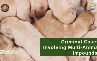 Criminal Cases Involving Multi-Animal Impounds