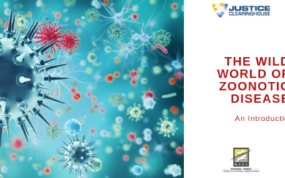 The Wild World of Zoonotic Disease: An Introduction