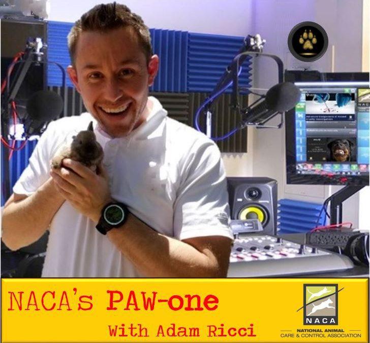 NACA's PAW-one : Episode 2 with Ed Jamison