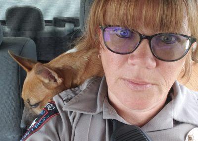 Metro Animal Services/Casper Police Department
